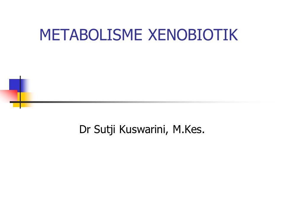 METABOLISME XENOBIOTIK Dr Sutji Kuswarini, M.Kes.