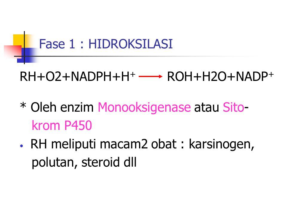 Fase 1 : HIDROKSILASI RH+O2+NADPH+H + ROH+H2O+NADP + * Oleh enzim Monooksigenase atau Sito- krom P450 RH meliputi macam2 obat : karsinogen, polutan, s