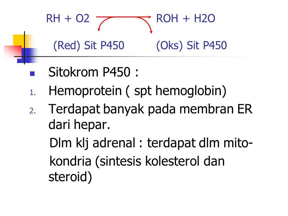 RH + O2 ROH + H2O (Red) Sit P450 (Oks) Sit P450 Sitokrom P450 : 1. Hemoprotein ( spt hemoglobin) 2. Terdapat banyak pada membran ER dari hepar. Dlm kl