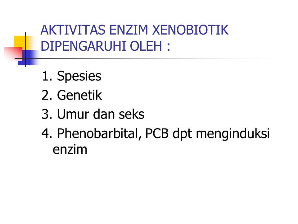 AKTIVITAS ENZIM XENOBIOTIK DIPENGARUHI OLEH : 1. Spesies 2. Genetik 3. Umur dan seks 4. Phenobarbital, PCB dpt menginduksi enzim