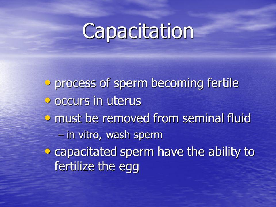 Hyperactivation facilitates sperm-oocyte contact facilitates sperm-oocyte contact occurs in oviduct occurs in oviduct motility pattern becomes frenzied motility pattern becomes frenzied