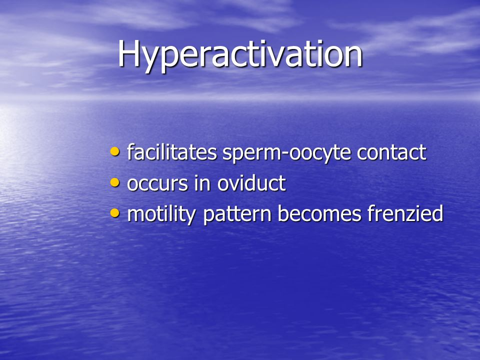 Hyperactivation facilitates sperm-oocyte contact facilitates sperm-oocyte contact occurs in oviduct occurs in oviduct motility pattern becomes frenzie