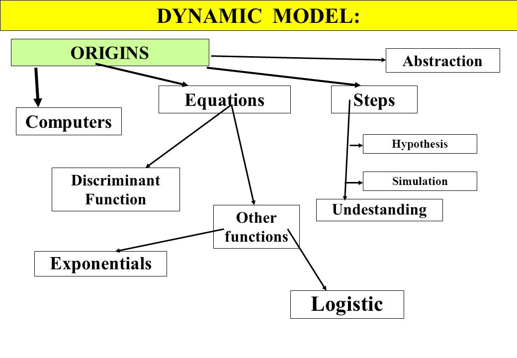 DYNAMIC MODEL DIAGRAMS RELATIONAL SYMBOLS RATE EQUATIONS LEVELS PARAMETER INFORMATION FLOW SINK AUXILIARY VARIABLES MATERIAL FLOW