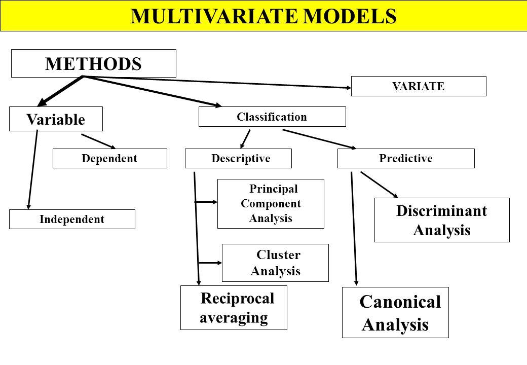 STOCHASTIC MODEL MARKOV ExampleAssumptions Transition probabilities AnalysisDisadvantage Raised mire Advantages Analysis What is a Markov Model? Marko