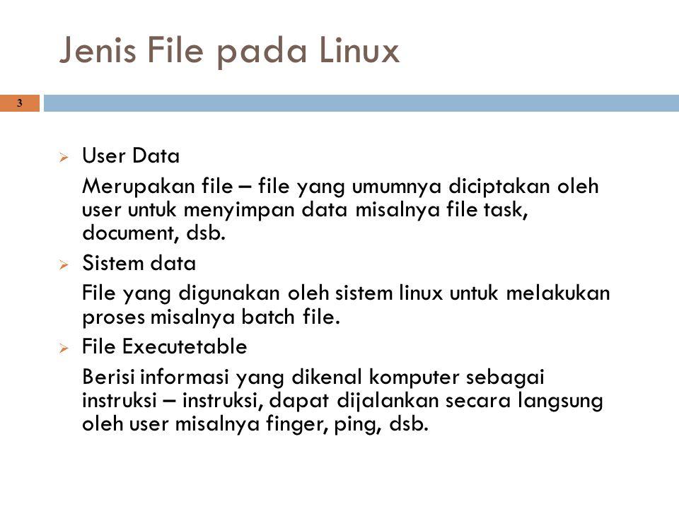 Jenis File pada Linux 3  User Data Merupakan file – file yang umumnya diciptakan oleh user untuk menyimpan data misalnya file task, document, dsb. 