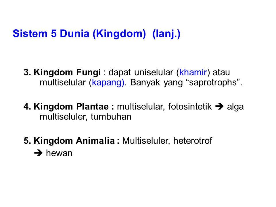 Sistem 5 Dunia (Kingdom) (lanj.) 3.