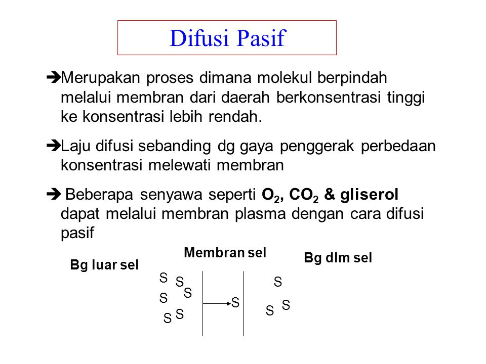  Merupakan proses dimana molekul berpindah melalui membran dari daerah berkonsentrasi tinggi ke konsentrasi lebih rendah.  Laju difusi sebanding dg