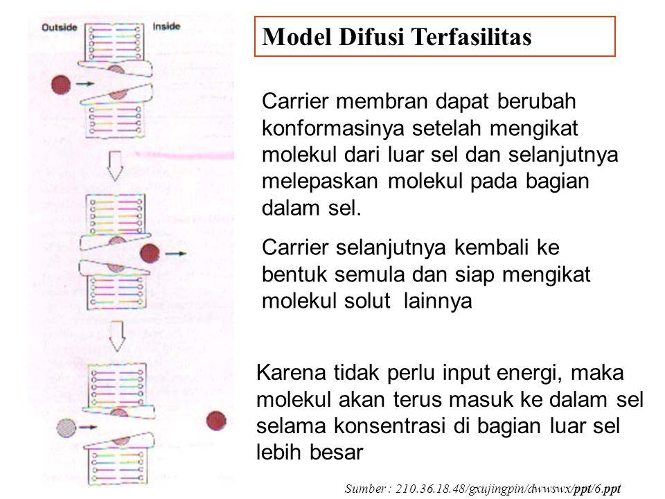 Carrier membran dapat berubah konformasinya setelah mengikat molekul dari luar sel dan selanjutnya melepaskan molekul pada bagian dalam sel.