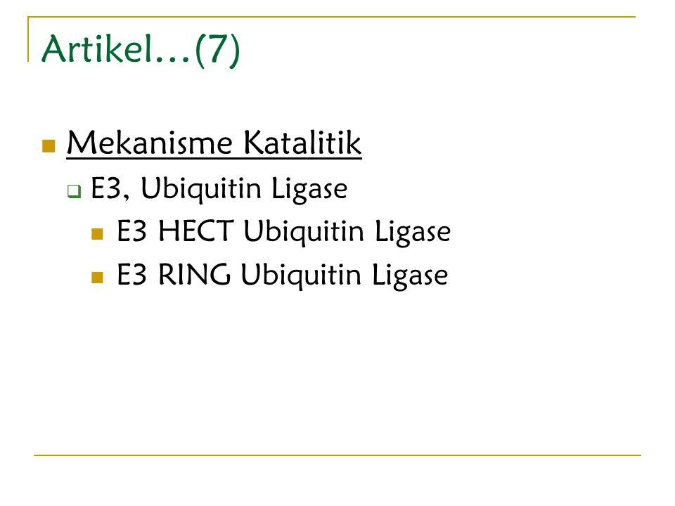 Artikel…(7) Mekanisme Katalitik  E3, Ubiquitin Ligase E3 HECT Ubiquitin Ligase E3 RING Ubiquitin Ligase