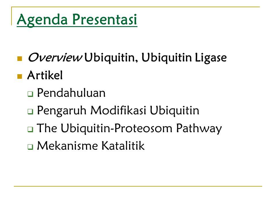 Agenda Presentasi Overview Ubiquitin, Ubiquitin Ligase Artikel  Pendahuluan  Pengaruh Modifikasi Ubiquitin  The Ubiquitin-Proteosom Pathway  Mekanisme Katalitik