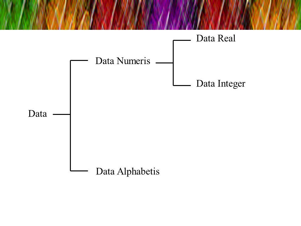 Data Data Numeris Data Real Data Integer Data Alphabetis