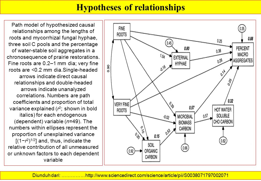 Hypotheses of relationships Diunduh dari: http://www.sciencedirect.com/science/article/pii/S0019850107001149 …………… Determinants of the sophistication