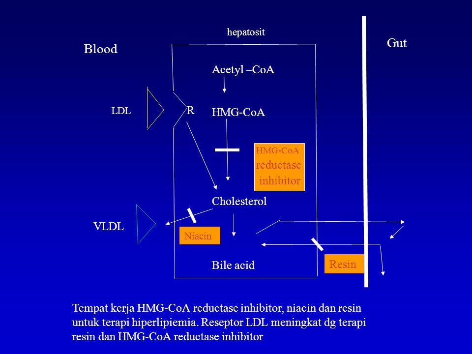 hepatosit LDL R Acetyl –CoA HMG-CoA reductase inhibitor Cholesterol Bile acid VLDL Resin Niacin Blood Gut Tempat kerja HMG-CoA reductase inhibitor, ni