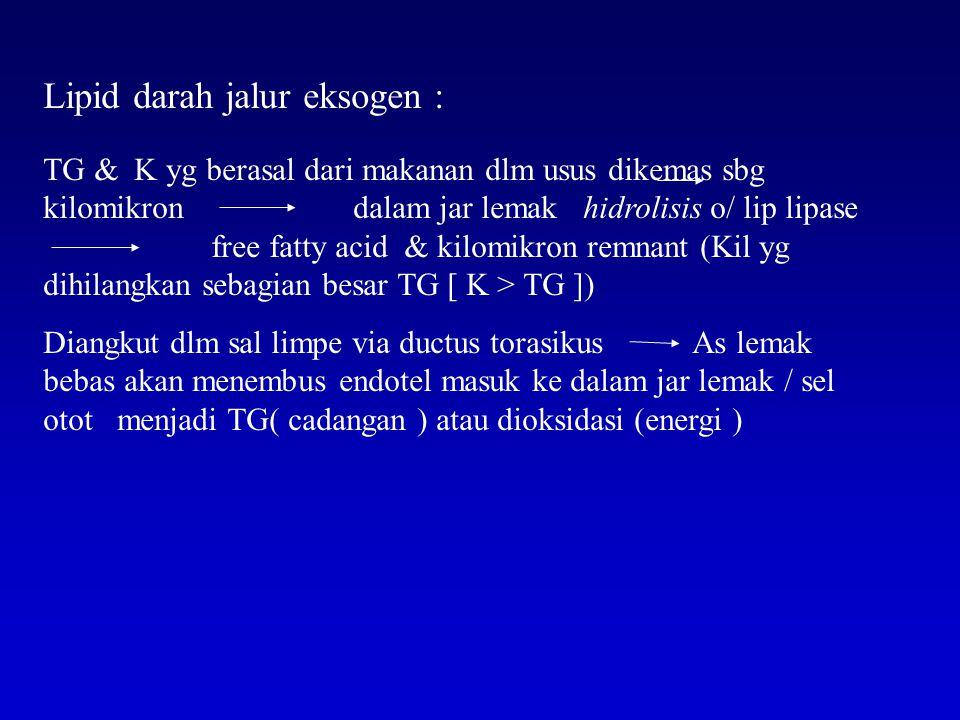 Lipid darah jalur eksogen : TG & K yg berasal dari makanan dlm usus dikemas sbg kilomikron dalam jar lemak hidrolisis o/ lip lipase free fatty acid & kilomikron remnant (Kil yg dihilangkan sebagian besar TG [ K > TG ]) Diangkut dlm sal limpe via ductus torasikus As lemak bebas akan menembus endotel masuk ke dalam jar lemak / sel otot menjadi TG( cadangan ) atau dioksidasi (energi )
