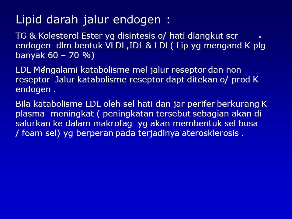 Lipid darah jalur endogen : TG & Kolesterol Ester yg disintesis o/ hati diangkut scr endogen dlm bentuk VLDL,IDL & LDL( Lip yg mengand K plg banyak 60 – 70 %) LDL Mengalami katabolisme mel jalur reseptor dan non reseptor Jalur katabolisme reseptor dapt ditekan o/ prod K endogen.