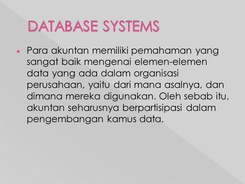  Para akuntan memiliki pemahaman yang sangat baik mengenai elemen-elemen data yang ada dalam organisasi perusahaan, yaitu dari mana asalnya, dan dimana mereka digunakan.