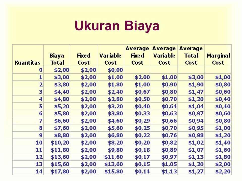 Ukuran Biaya