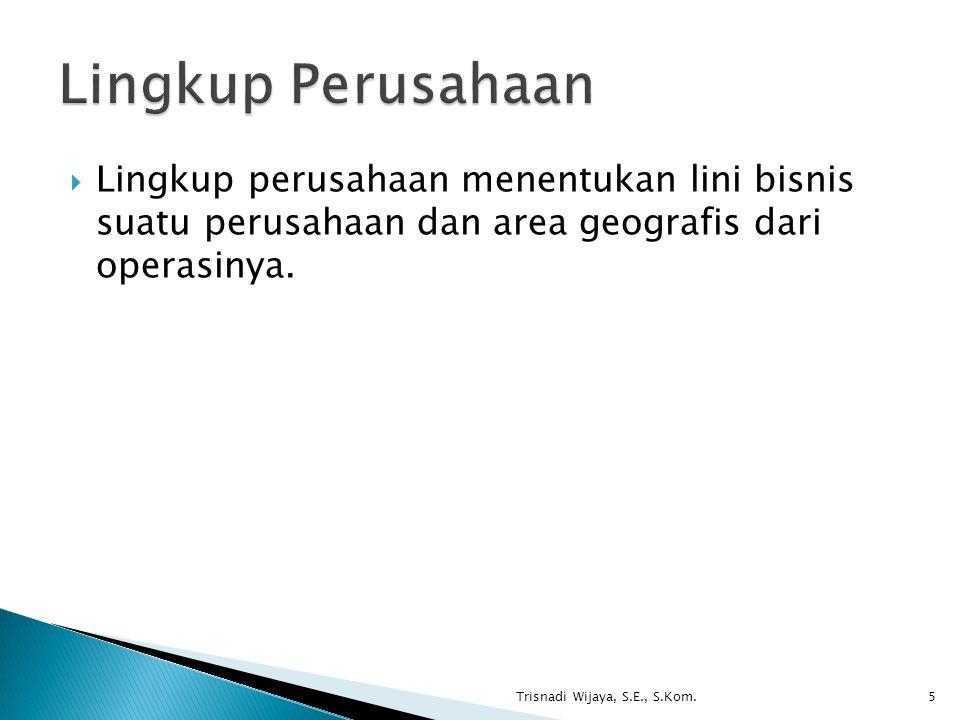  Lingkup perusahaan menentukan lini bisnis suatu perusahaan dan area geografis dari operasinya. Trisnadi Wijaya, S.E., S.Kom.5