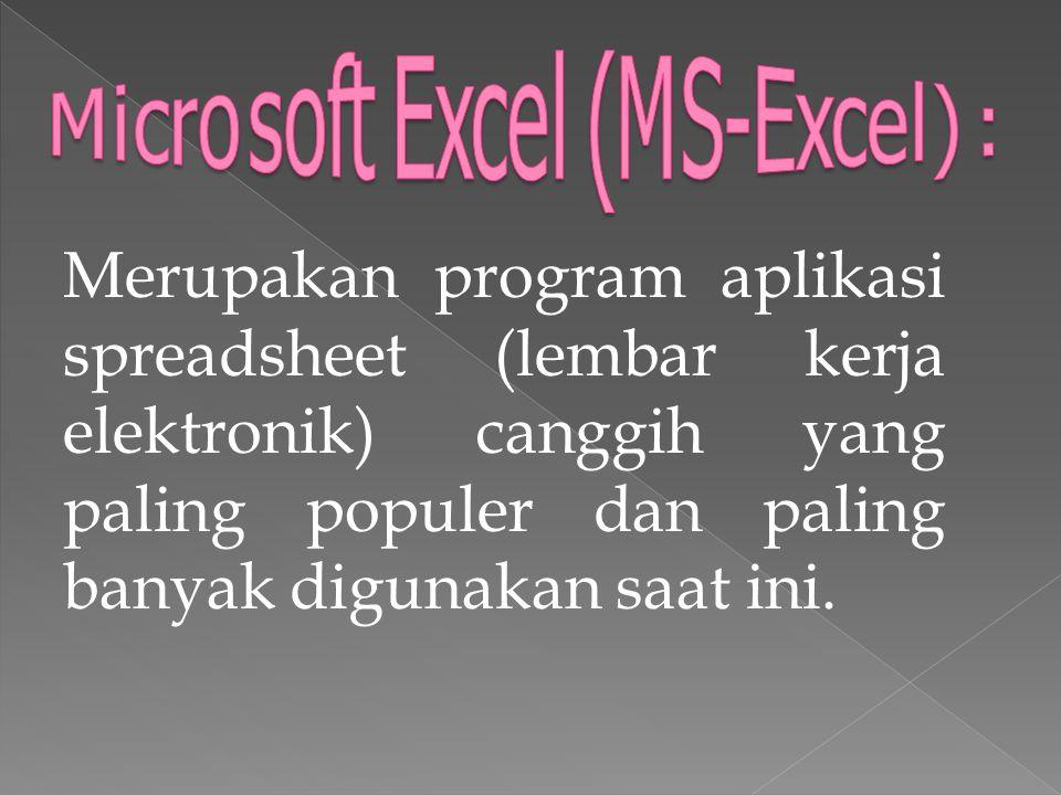Merupakan program aplikasi spreadsheet (lembar kerja elektronik) canggih yang paling populer dan paling banyak digunakan saat ini.