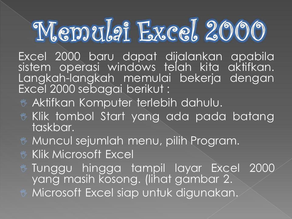 Sebelum melangkah lebih jauh dengan Excel 2000, ada baiknya terlebih dahulu kita mengenal tipe-tipe data yang terdapat pada excel itu sendiri.