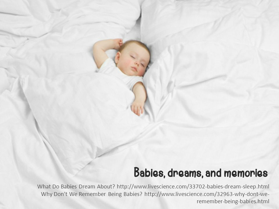 What Do Babies Dream About.