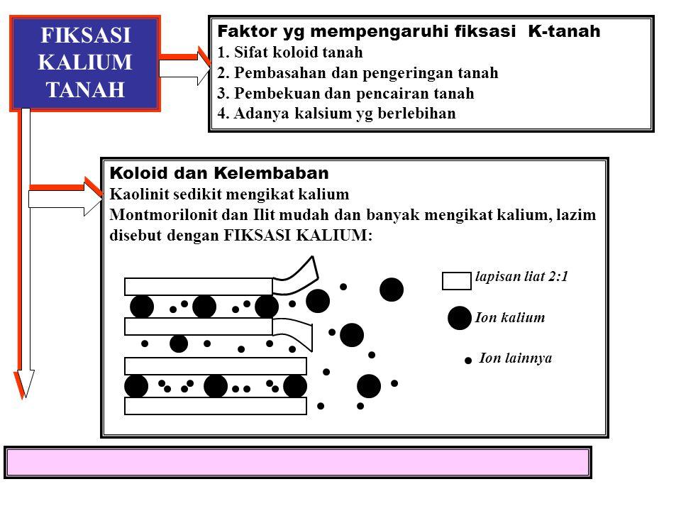 Konsentrasi K-larutan tanah vs K dd K-larutan tanah (me/l) 5.0 Tanah berpasir 4.0 3.0 2.0 Tanah liat 1.0 10 50 100 K dapat ditukar, mg K / 100 g tanah
