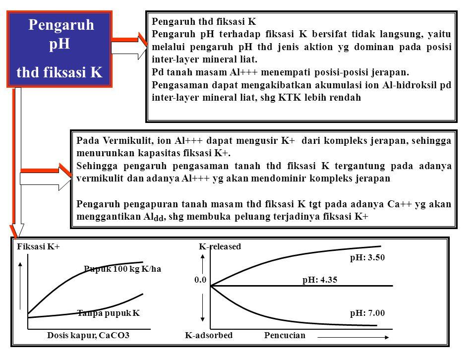 Faktor Ketersediaan K- tanah 1. MOBILITAS Mobilitas kalium dalam tanah ditentukan oleh bentuk K+, yaitu bentuk bebas dalam larutan tanah atau bentuk t