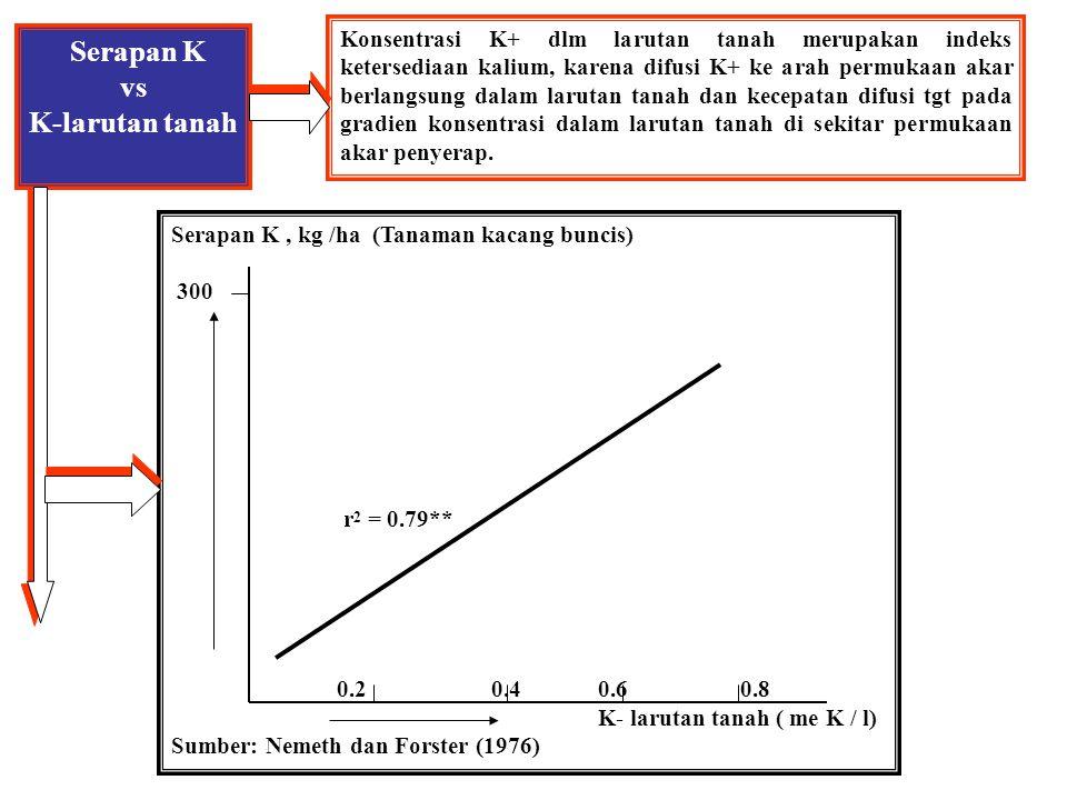 Lengas Tanah terhadap K-tanah Serapan K tanaman jagung Pupuk Kalium: 49 mg K/100 g tnh 29 9 0 Kadar air tanah (20-40%) Sumber: Grimme (1976)