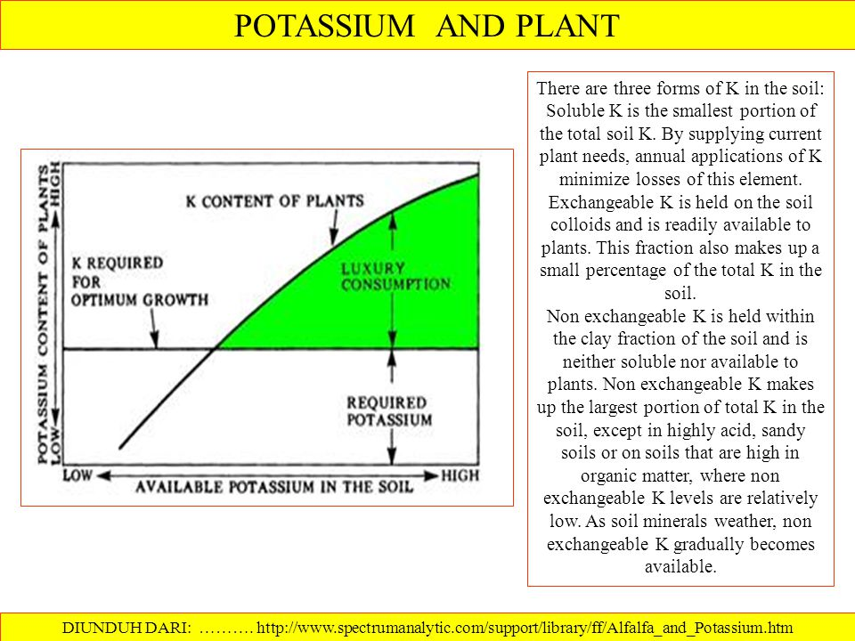 AGR-11. POTASSIUM IN KENTUCKY SOILS. ISSUED: 5-73 REVISED: by Lloyd Murdock, and Kenneth Wells, Extension Specialists in Agronomy, University of Kentu