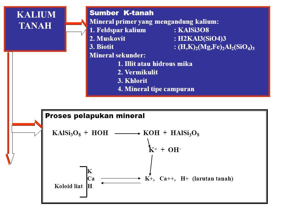 FIKSASI KALIUM TANAH Faktor yg mempengaruhi fiksasi K-tanah 1.