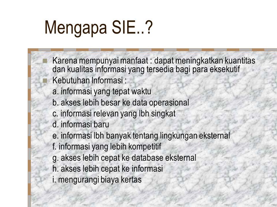 Mengapa SIE..? Karena mempunyai manfaat : dapat meningkatkan kuantitas dan kualitas informasi yang tersedia bagi para eksekutif Kebutuhan Informasi :