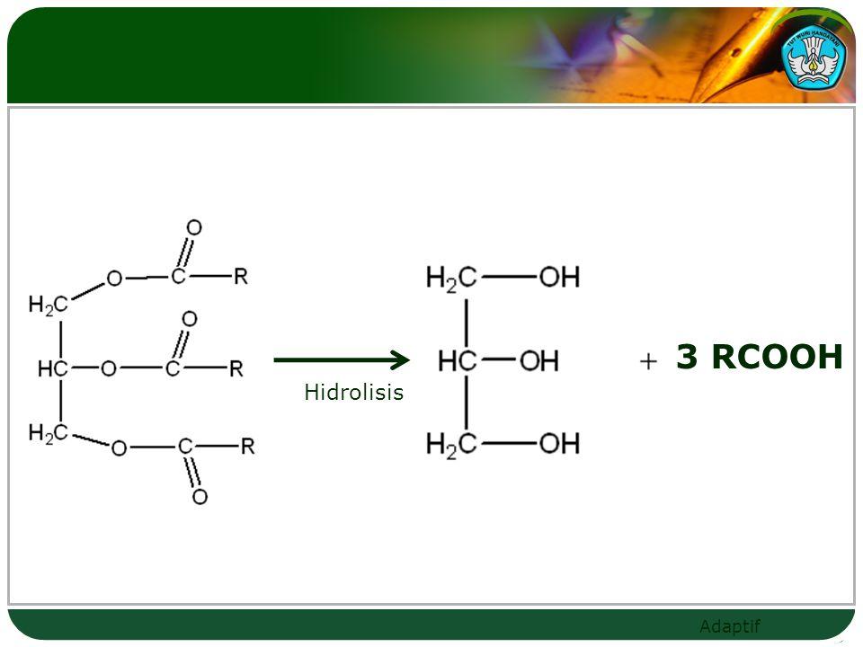 Adaptif 3 RCOOH Hidrolisis