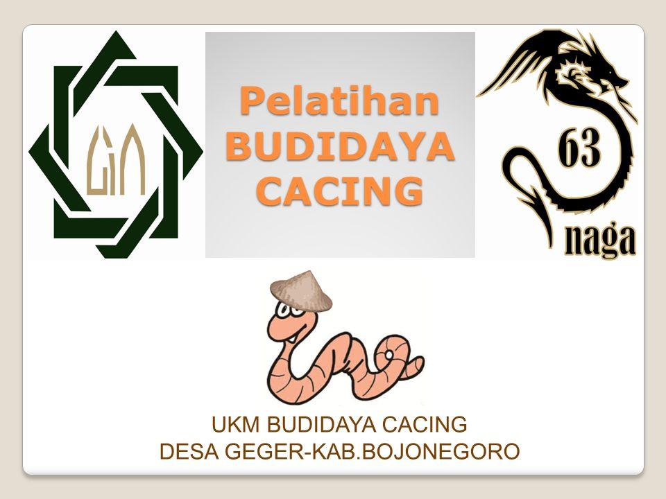 Pelatihan BUDIDAYA CACING UKM BUDIDAYA CACING DESA GEGER-KAB.BOJONEGORO
