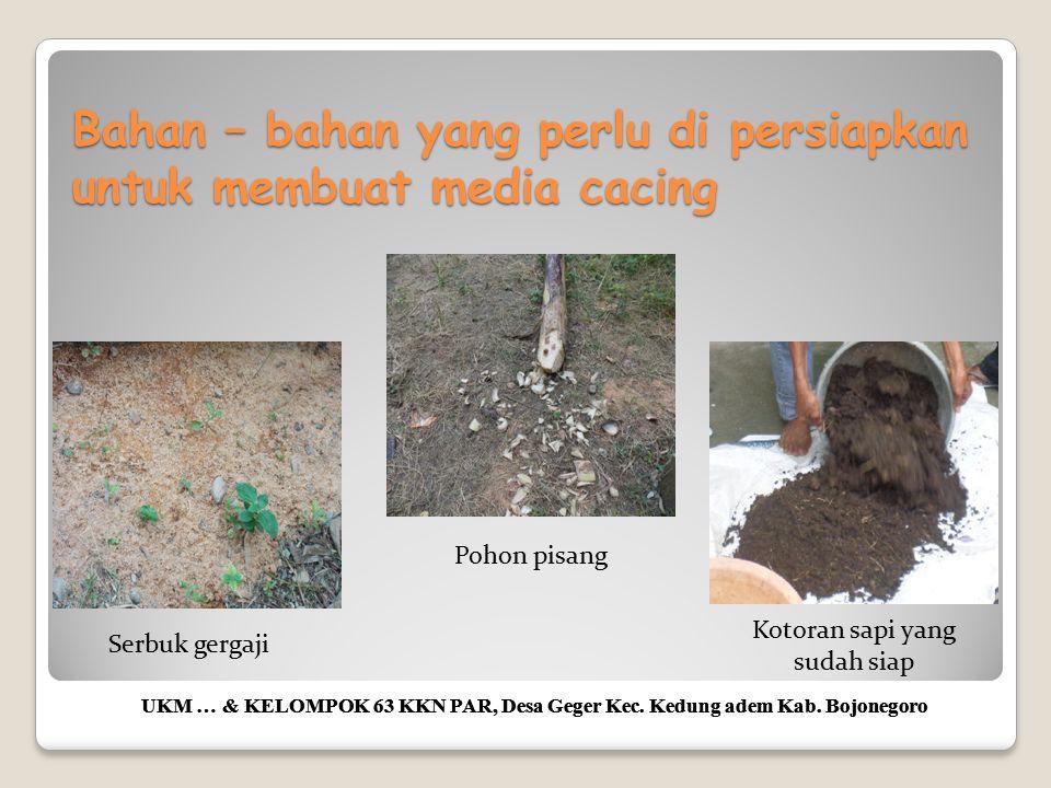 Cara membuat media ternak cacing UKM … & KELOMPOK 63 KKN PAR, Desa Geger Kec.