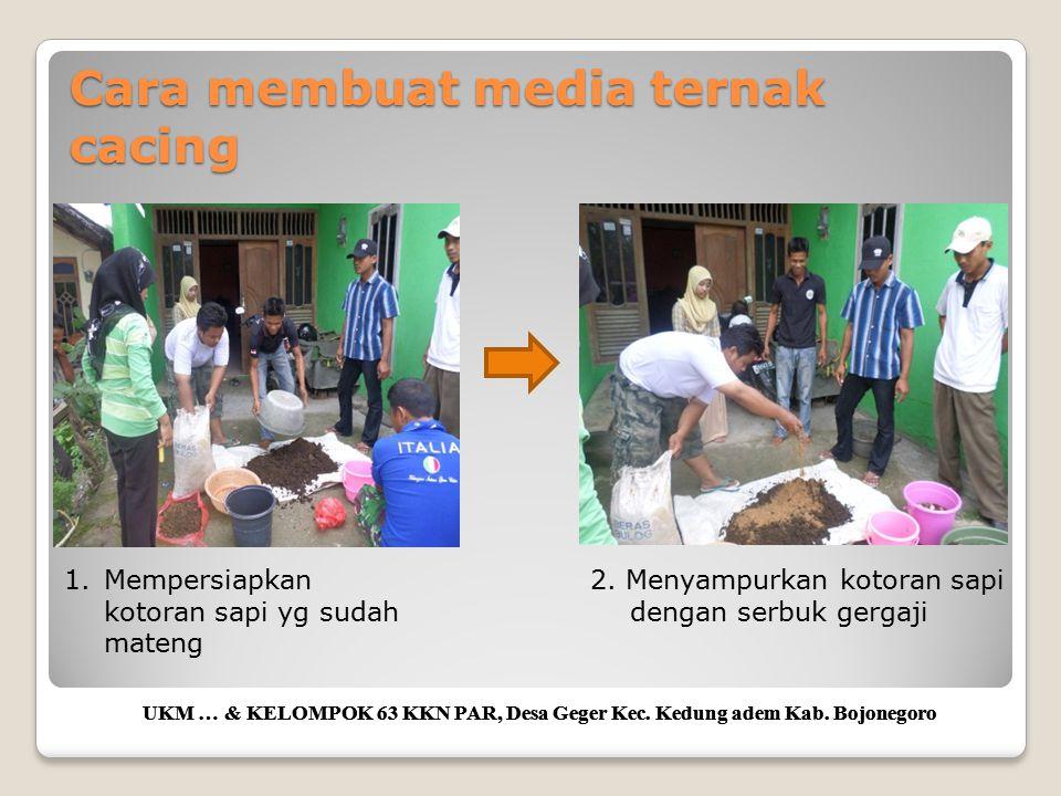 Cara membuat media ternak cacing UKM … & KELOMPOK 63 KKN PAR, Desa Geger Kec. Kedung adem Kab. Bojonegoro 1.Mempersiapkan kotoran sapi yg sudah mateng