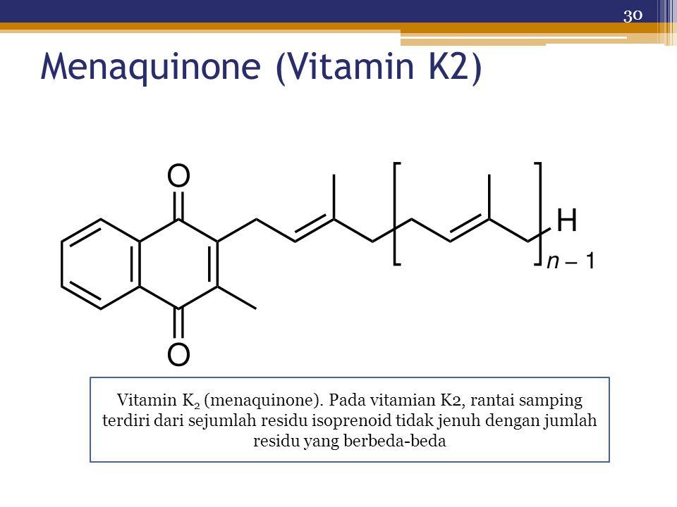 Menaquinone (Vitamin K2) 30 Vitamin K 2 (menaquinone). Pada vitamian K2, rantai samping terdiri dari sejumlah residu isoprenoid tidak jenuh dengan jum