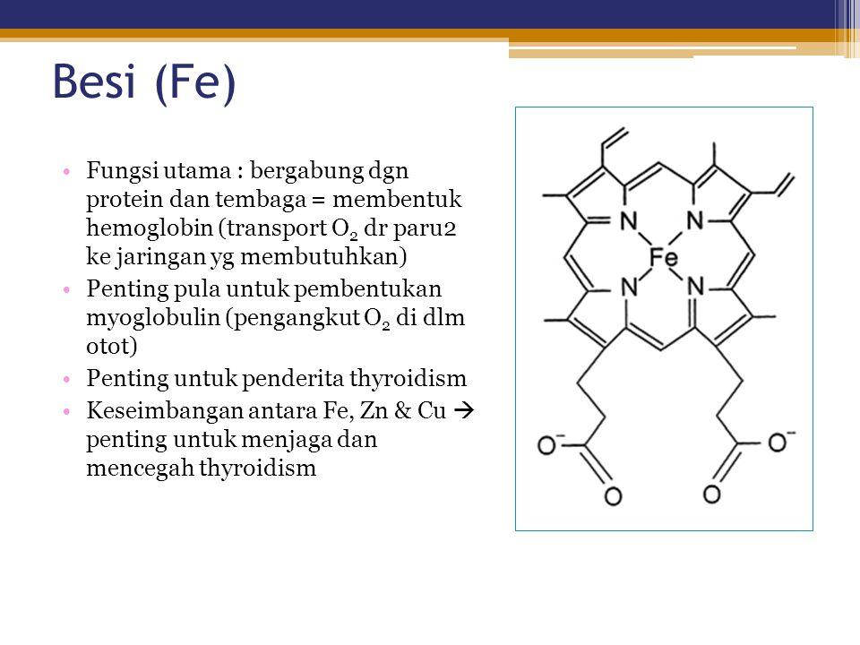 Besi (Fe) Fungsi utama : bergabung dgn protein dan tembaga = membentuk hemoglobin (transport O 2 dr paru2 ke jaringan yg membutuhkan) Penting pula unt