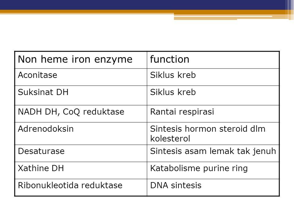 Non heme iron enzymefunction AconitaseSiklus kreb Suksinat DHSiklus kreb NADH DH, CoQ reduktaseRantai respirasi AdrenodoksinSintesis hormon steroid dl