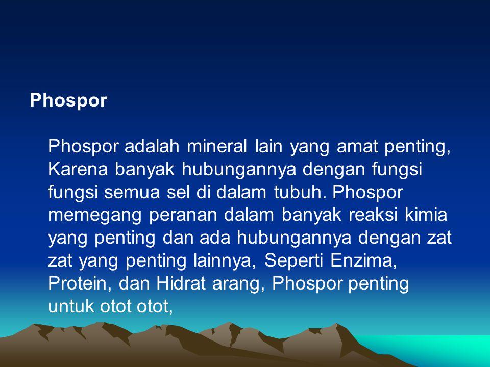 Tanpa phosphor didalam tubuh, manusia tidak akan dapat mengangkat kepala atau menggerakan jari sekalipun Phospor menolong juga memelihara keseimbangan asam basa yang normal di dalam tubuh dan perlu sekali dalam pembentukan gigi dan tulang yang kuat
