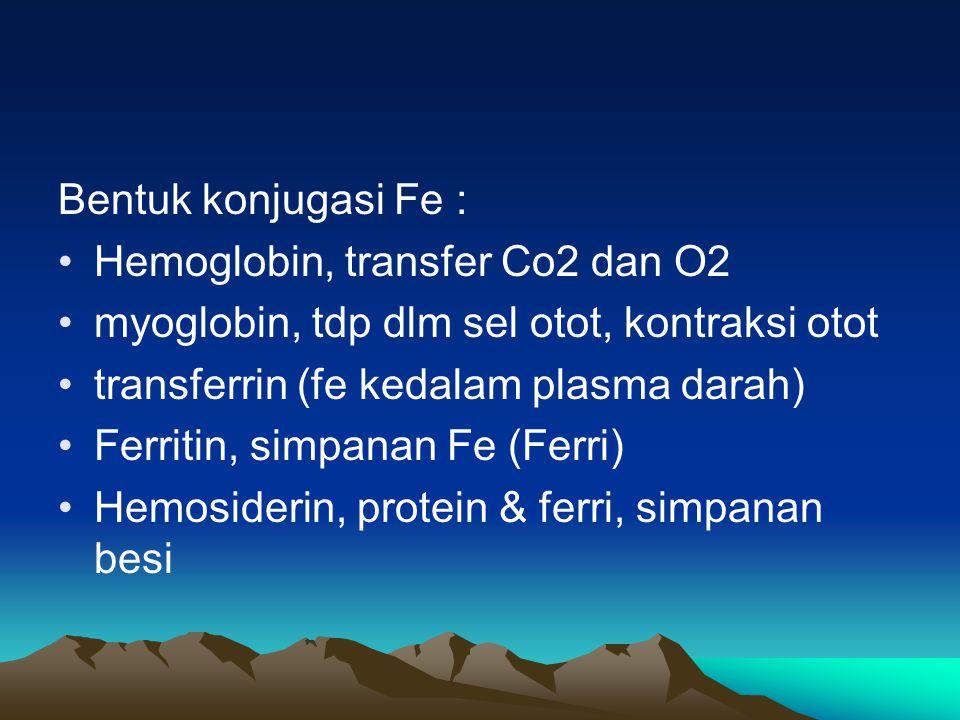 Bentuk konjugasi Fe : Hemoglobin, transfer Co2 dan O2 myoglobin, tdp dlm sel otot, kontraksi otot transferrin (fe kedalam plasma darah) Ferritin, simpanan Fe (Ferri) Hemosiderin, protein & ferri, simpanan besi