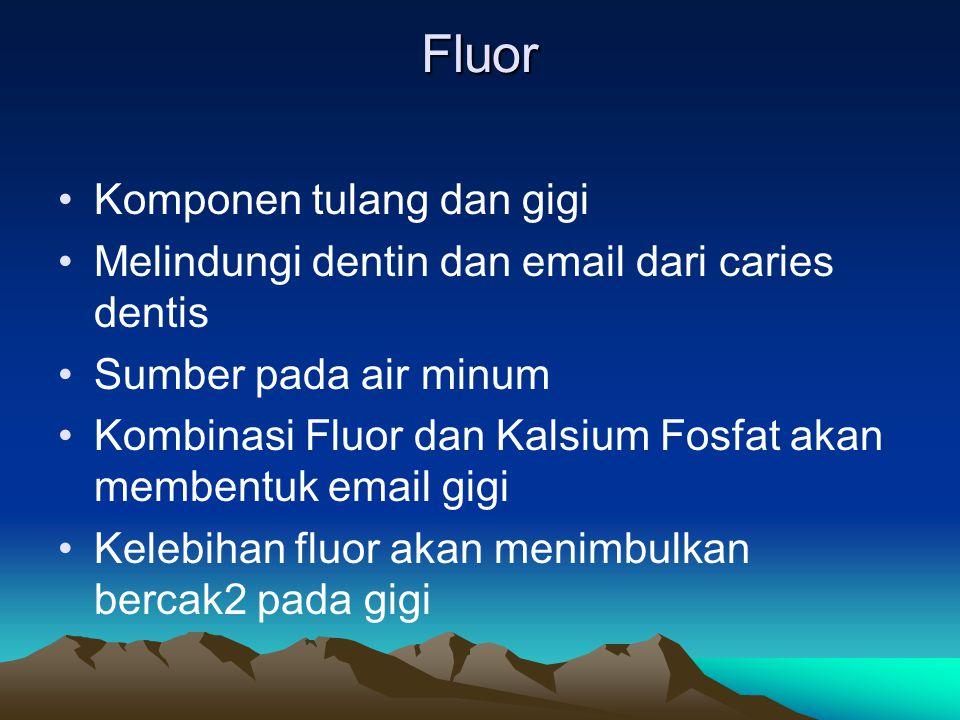 Fluor Komponen tulang dan gigi Melindungi dentin dan email dari caries dentis Sumber pada air minum Kombinasi Fluor dan Kalsium Fosfat akan membentuk