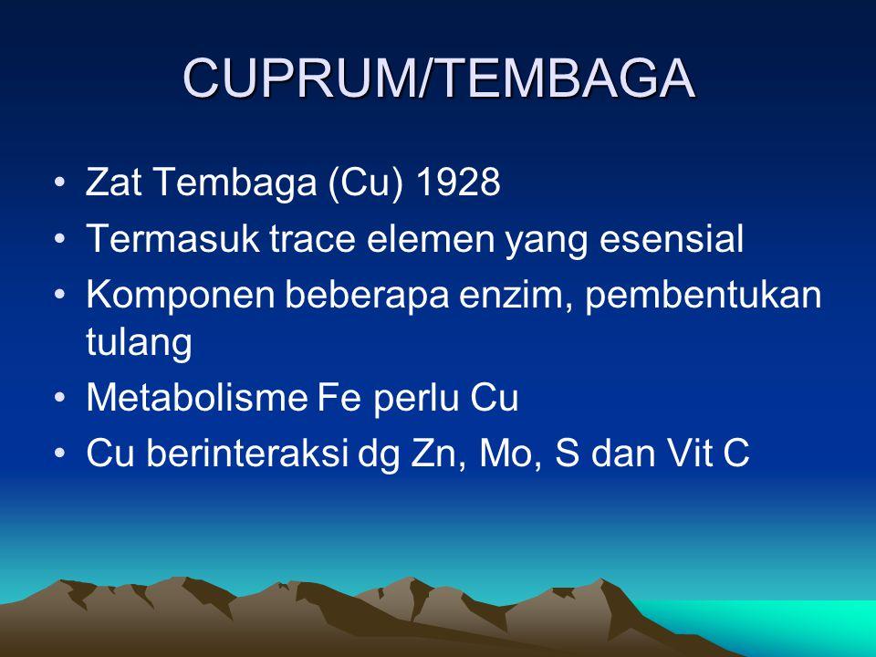 CUPRUM/TEMBAGA Zat Tembaga (Cu) 1928 Termasuk trace elemen yang esensial Komponen beberapa enzim, pembentukan tulang Metabolisme Fe perlu Cu Cu berinteraksi dg Zn, Mo, S dan Vit C