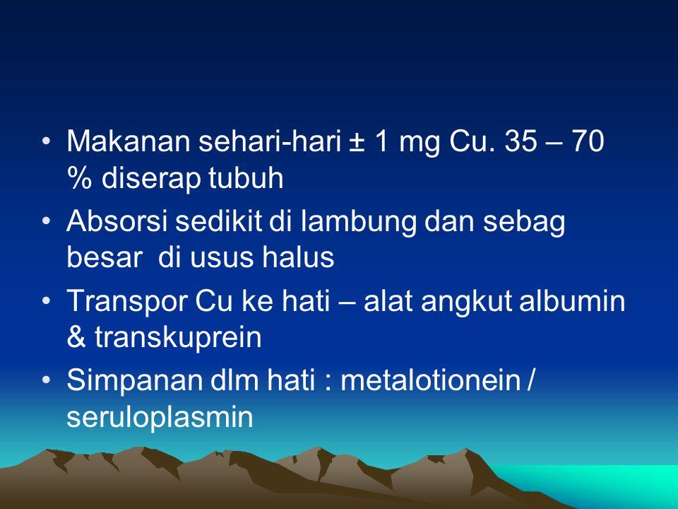 Makanan sehari-hari ± 1 mg Cu.