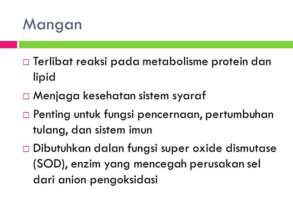 Mangan  Terlibat reaksi pada metabolisme protein dan lipid  Menjaga kesehatan sistem syaraf  Penting untuk fungsi pencernaan, pertumbuhan tulang, dan sistem imun  Dibutuhkan dalan fungsi super oxide dismutase (SOD), enzim yang mencegah perusakan sel dari anion pengoksidasi
