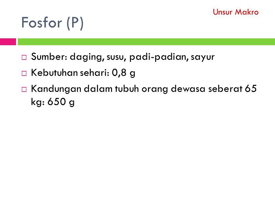 Fosfor (P)  Sumber: daging, susu, padi-padian, sayur  Kebutuhan sehari: 0,8 g  Kandungan dalam tubuh orang dewasa seberat 65 kg: 650 g Unsur Makro