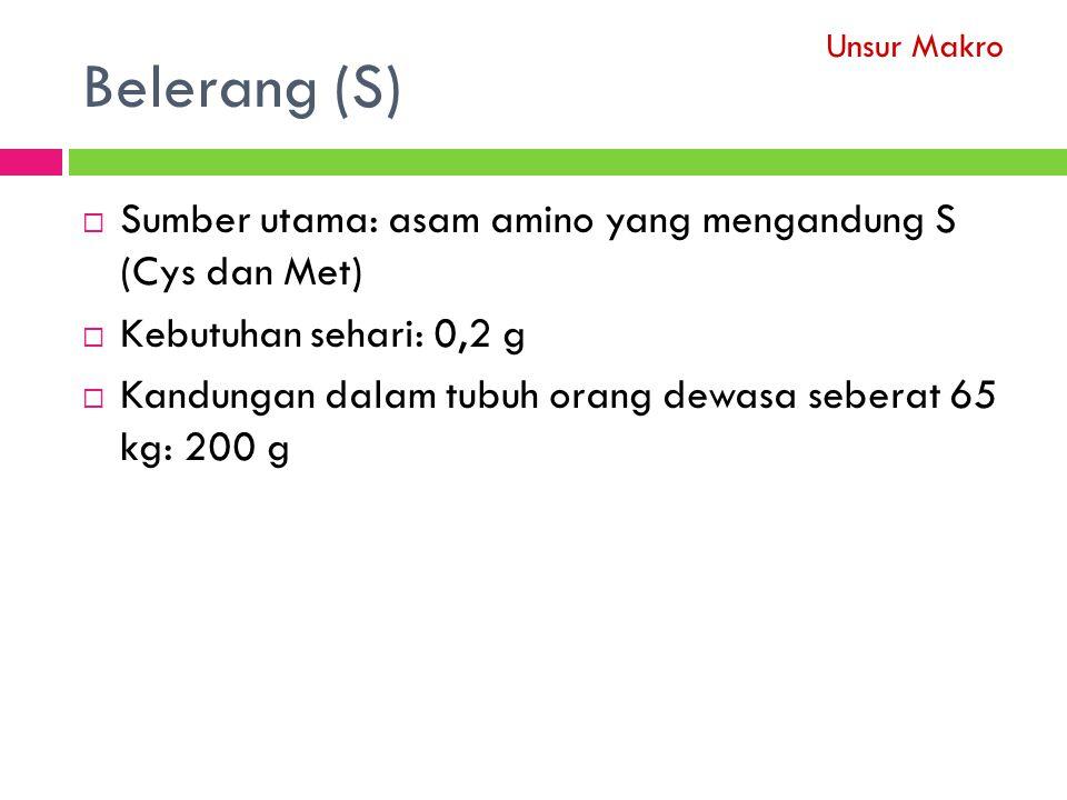 Belerang (S)  Sumber utama: asam amino yang mengandung S (Cys dan Met)  Kebutuhan sehari: 0,2 g  Kandungan dalam tubuh orang dewasa seberat 65 kg: