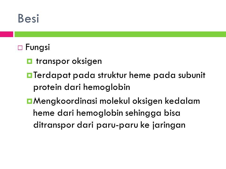 Besi  Fungsi  transpor oksigen  Terdapat pada struktur heme pada subunit protein dari hemoglobin  Mengkoordinasi molekul oksigen kedalam heme dari hemoglobin sehingga bisa ditranspor dari paru-paru ke jaringan