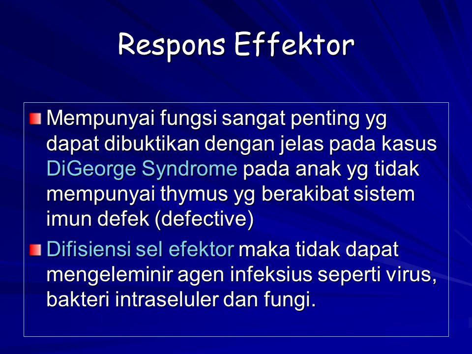 Respons Effektor Mempunyai fungsi sangat penting yg dapat dibuktikan dengan jelas pada kasus DiGeorge Syndrome pada anak yg tidak mempunyai thymus yg