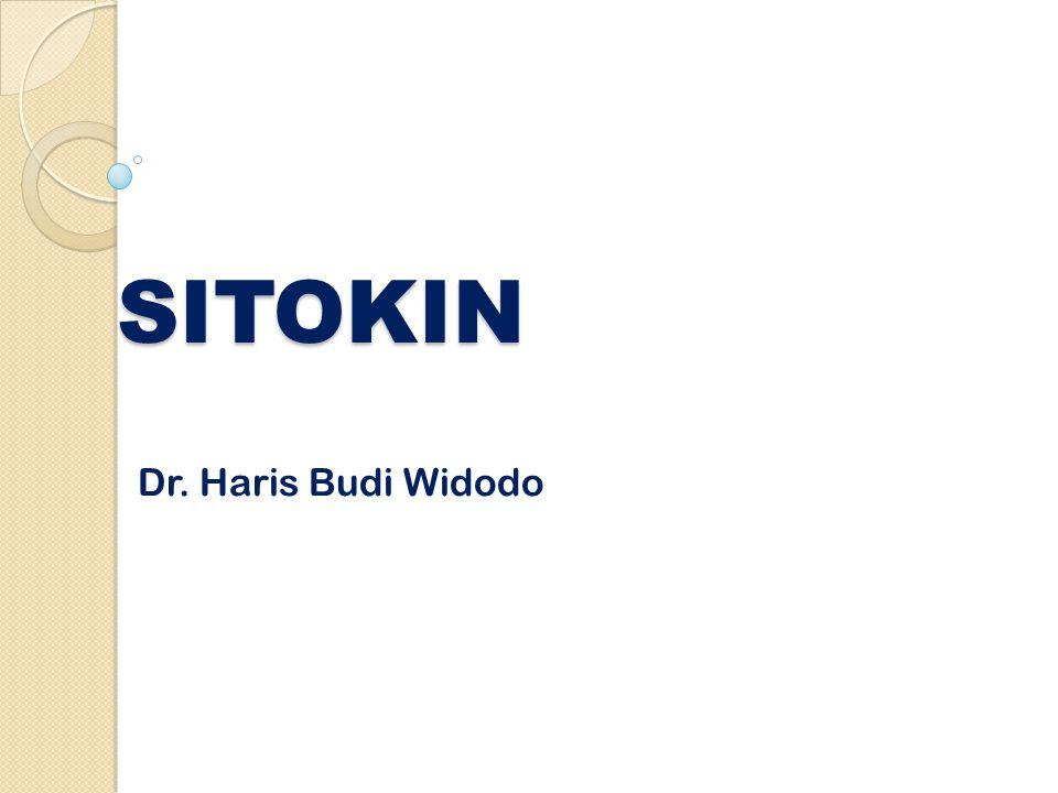 SITOKIN Dr. Haris Budi Widodo
