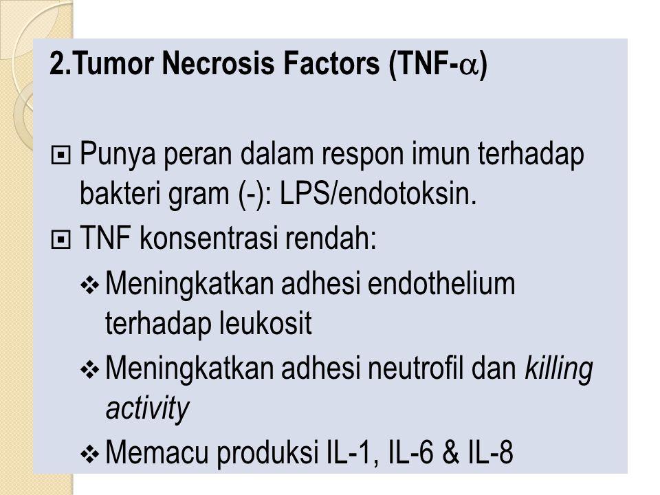 2.Tumor Necrosis Factors (TNF-  )  Punya peran dalam respon imun terhadap bakteri gram (-): LPS/endotoksin.